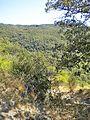Val di Mezzana-paesaggio 14.jpg