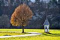 Velden Pulpitsch Bildstock 14112010 466 DxO.jpg