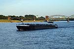 Vidi (ship, 2009) 001.JPG