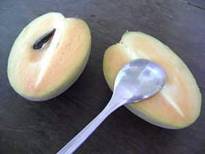 Sapote - Image: Vietnamese Sapote