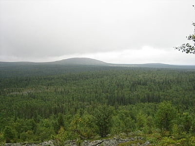 View from Värriö II towards Sauoiva.jpg