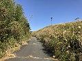 View near Aso Farm Land 5.jpg