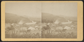 View of Lawrenceville Cement Works, from the hills, N.Y, by D. J. Auchmoody.png