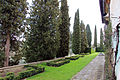 Villa antinori delle rose, parco 02.JPG