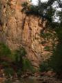 Virgin river Zion National Park.TIF