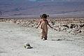 Visita al Salar de Atacama, Chile..jpg