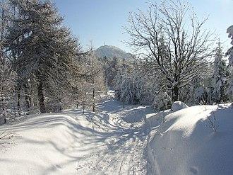 Lusatian Mountains - Image: Vrchol Luže v zimě