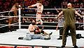 WWE 2014-04-07 19-35-59 NEX-6 0966 DxO (13929386776).jpg