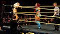 WWE NXT 2015-03-28 00-16-10 ILCE-6000 3921 DxO (16744451734).jpg