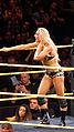 WWE NXT 2015-03-28 00-28-33 ILCE-6000 4008 DxO (17365020452).jpg