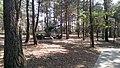 W skansenie - panoramio (5).jpg