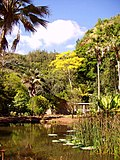 Waimea Valley Audubon Center, Oahu, Hawaii - lake view.JPG
