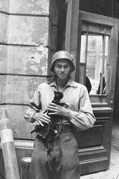 File:Warsaw Uprising by Lokajski - Eugeniusz Lokajski with cat.jpg