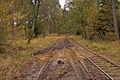 Warwickslade Cutting - repositioned railway - geograph.org.uk - 1570674.jpg