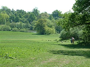 Weald Country Park - Weald Country Park