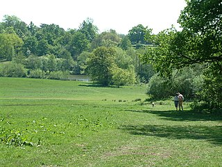 park in the United Kingdom