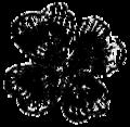 WeirdTalesv36n1pg045 Clover 2.png