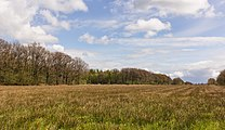 Wijnjeterper Schar, Natura 2000-gebied provincie Friesland 007.jpg