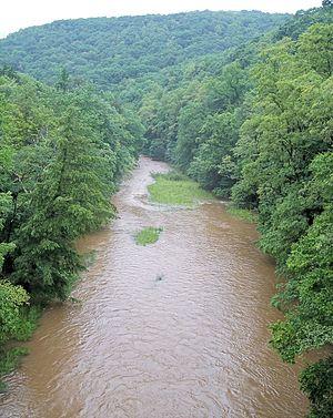 Williams River (West Virginia) - Image: Williams River