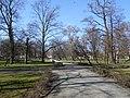 Wiosna wystartowała ,-)) 19 - panoramio.jpg