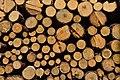 Woodpile in Reitkalli.jpg