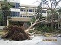Xangsane debris Danang 2.jpg