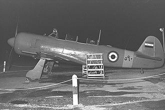 Yakovlev Yak-11 - Egyptian Air Force Yak-11