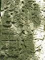 Yaxha stela 2.jpg