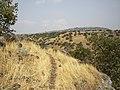 Yehudia - panoramio.jpg