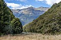 Young River, New Zealand 06.jpg