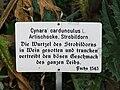 Zürich - Alter Botanischer Garten - Artischocke Schild IMG 0813.jpg