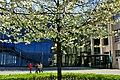 Zentrum für Kunst und Medientechnologie - panoramio.jpg