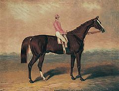"""Birdcatcher"" with jockey up.jpg"
