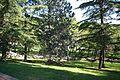 ® MADRID PARQUE EMPERATRIZ MARIA DE AUSTRIA PASEO - panoramio - Concepcion AMAT ORTA… (17).jpg