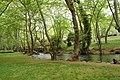 Νάουσσα - Άλσος Αγίου Νικολάου - panoramio.jpg