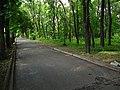 Ботанічний сад ДНУ 04.JPG