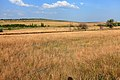 Возвышенность на левом берегу Янгиза - panoramio.jpg