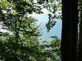 Вр.Марагидик-зад дърветата - panoramio.jpg
