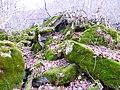 Каменный хаос на северном склоне горы Стрижамент 03.jpg