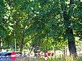 Кронштадт. Итальянский дворец, сад со стороны Обводного канала02.jpg