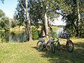 Лісові озера10.jpg