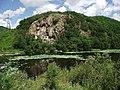 Озеро с лотосами у пос Горные Ключи Приморье.jpg