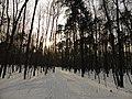 Природно-исторический парк Покровское-Стрешнево.jpg