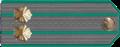 Саветнік мытнай службы II рангу.png