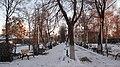 Усадьба Грузинских-Строгановых, парк перед домом.JPG