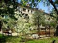 У двары дома №49 па вул. Маякоўскага - panoramio (1).jpg