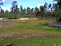 """ก่อนเป็น""""สวนสุนนท์กุล """"บ้านแก่งเค็ง - panoramio (8).jpg"""