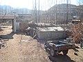 我家的院子 - panoramio.jpg