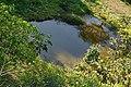 水池 Pond - panoramio.jpg