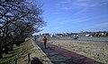 浅川サイクリングロード - panoramio.jpg
